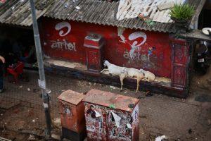 Merkwürdige Metropole Mumbai